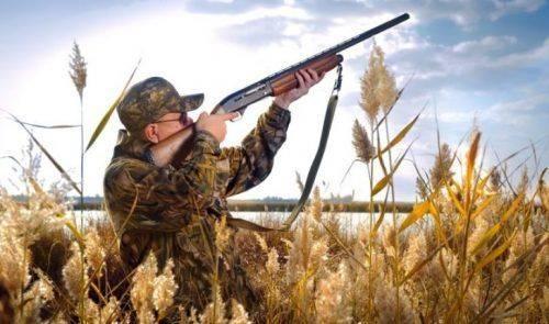 Що потрібно знати черкащанам під час полювання на пернату дичину