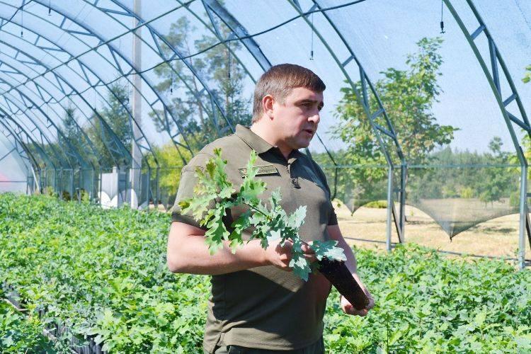 Черкаські лісівники роблять виклик глобальному потеплінню