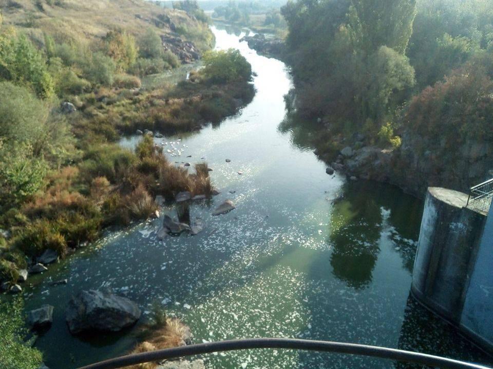 У річці на Черкащині виявили мертву рибу (фото)