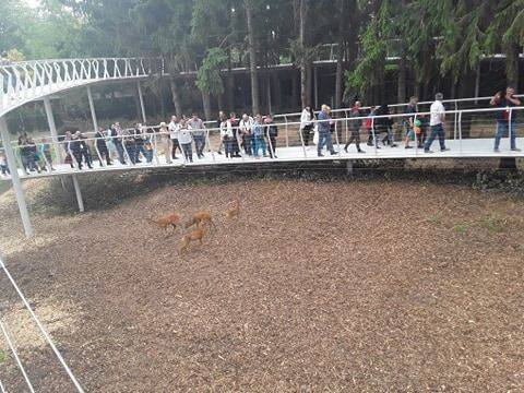 На День міста в Черкаському зоопарку відкрили експозицію, аналогів якої немає в усій Україні