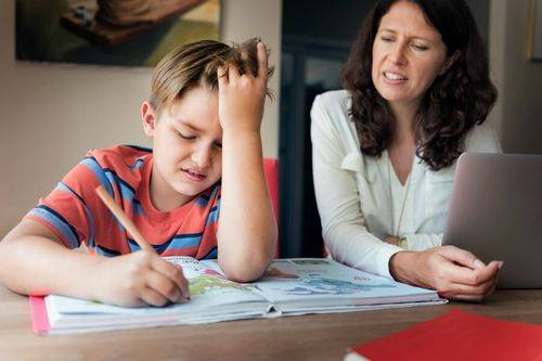 Чи варто переводити дитину на домашню освіту? Історії черкаських хомскулерів