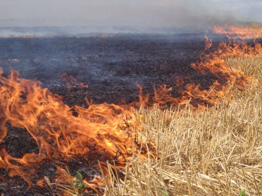 На Золотоніщині чоловік підпалив стерню та згорів