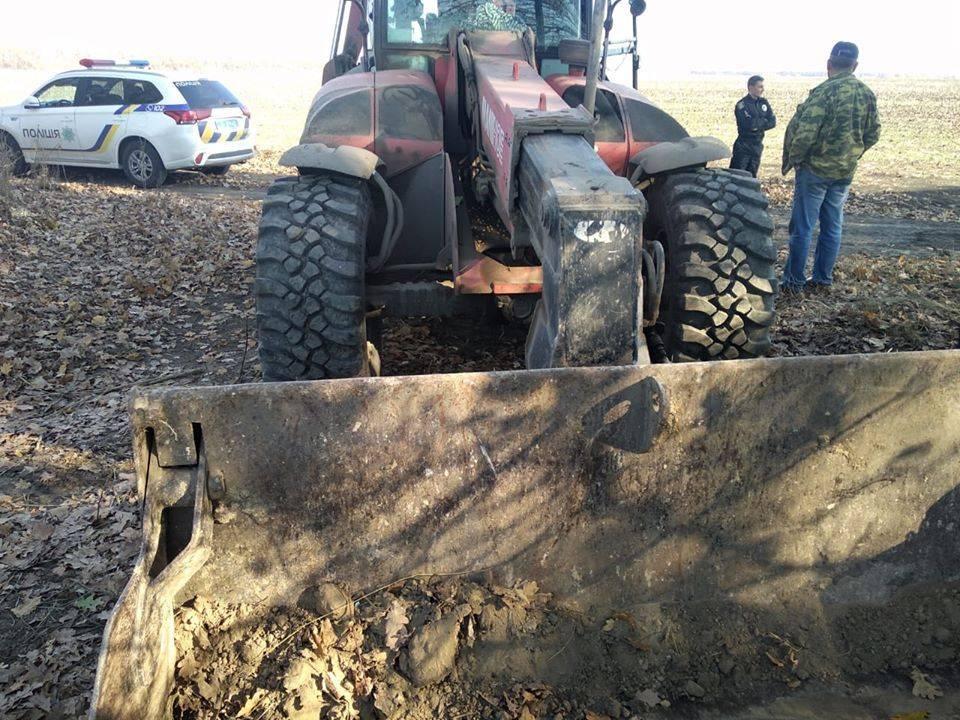 На Черкащині у полезахисній смузі виявили понад 20 трупів тварин (фото)