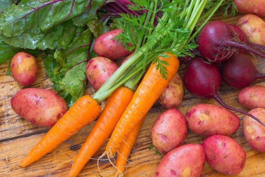 В Україні подешевшали картопля, морква та цибуля