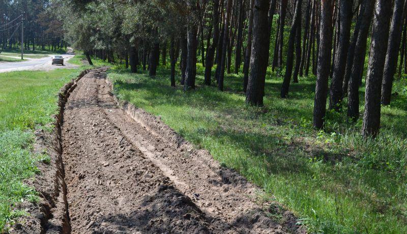 Черкаські лісівники облаштували 9 тисяч кілометрів протипожежного бар'єру