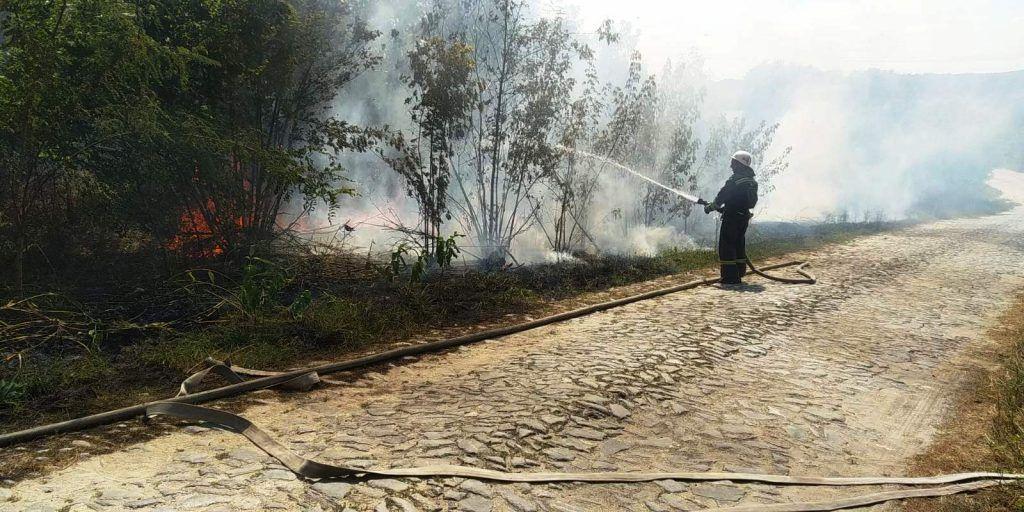 Минулої доби рятувальники Черкащини ліквідували 6 пожеж сухої рослинності (фото)