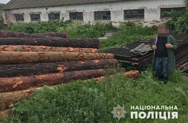 Посадовці одного з лісництв на Черкащині незаконно збували деревину