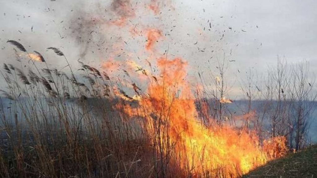 На Черкащині шосту добу горять торф'яники (відео)