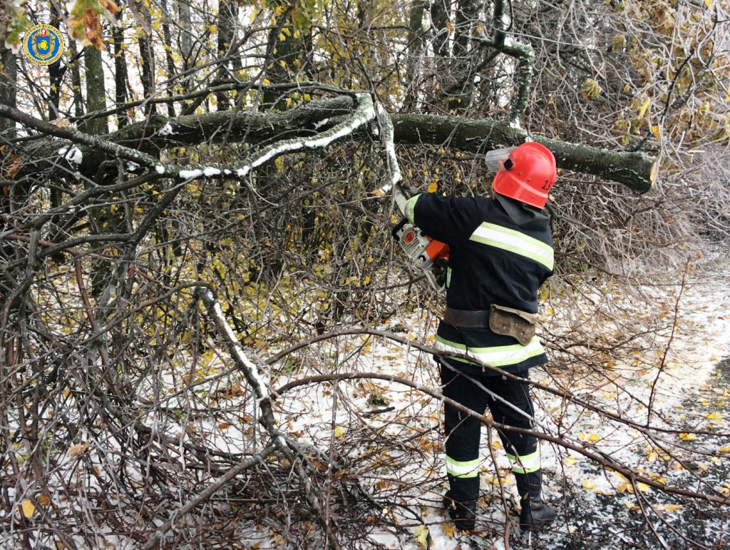 На Христинівщині дерево впало на дорогу та заблокувало рух транспорту (фото)