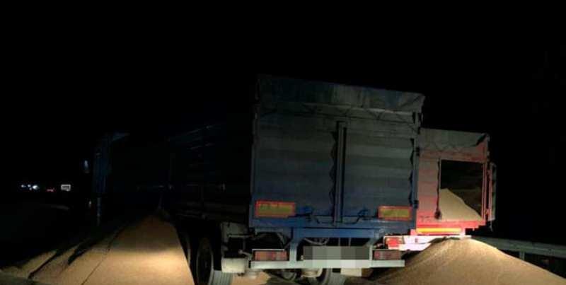 В Умані водії фур відмовилися відповідати за перегруз і висипали зерно на дорогу (фото)