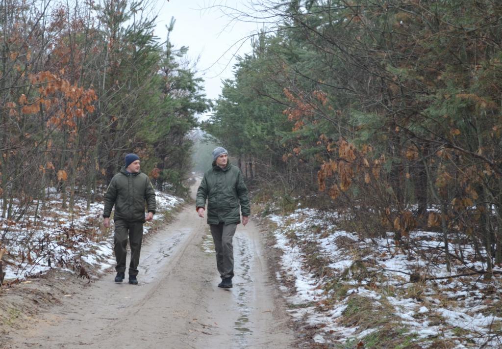 Лісівники Черкащини охороняють хвойні насадження у посиленому режимі