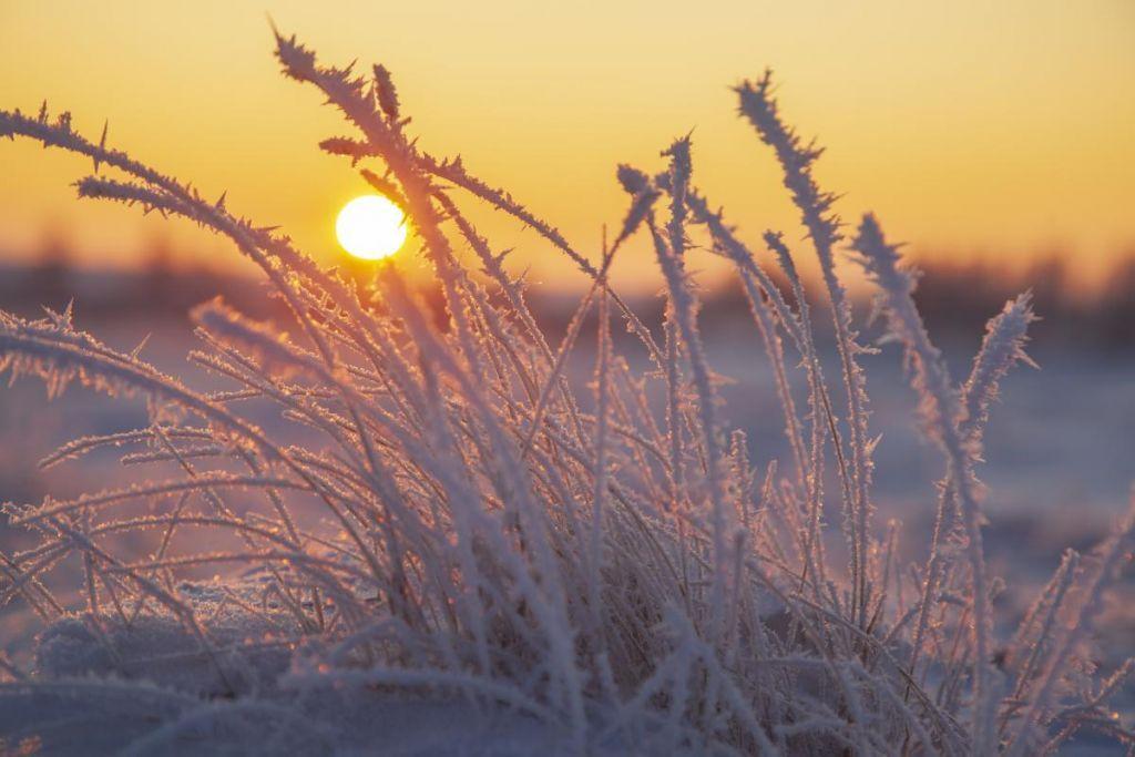 Морозна погода на Черкащині утримається на початку тижня