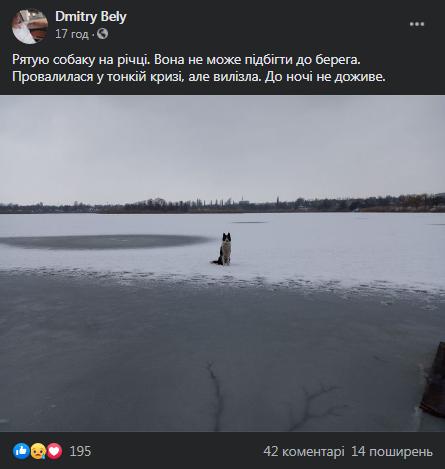 На Черкащині небайдужий чоловік врятував собаку з крижини