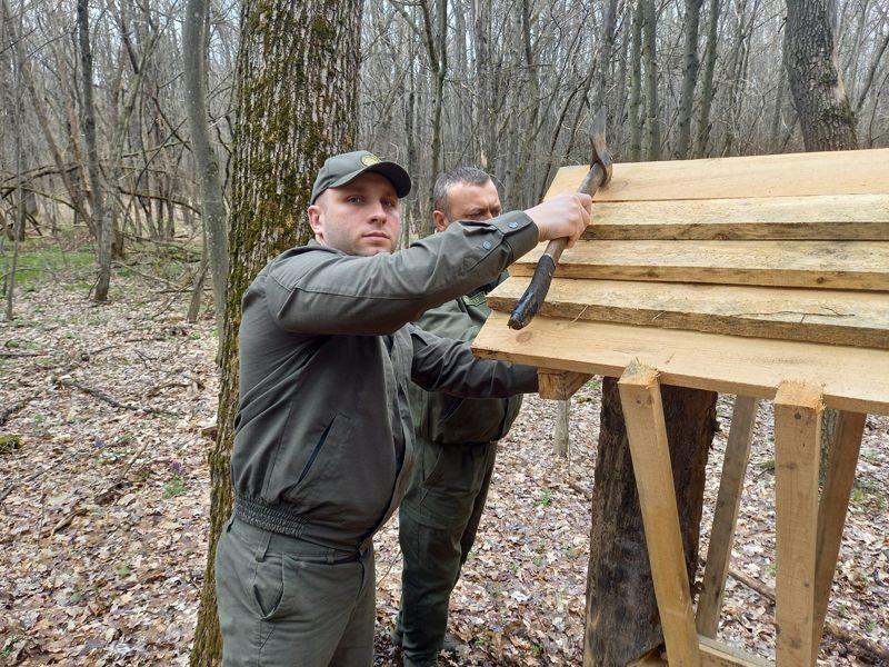 В Уманському лісгоспі облаштували два нових підгодівельних майданчика для диких звірів