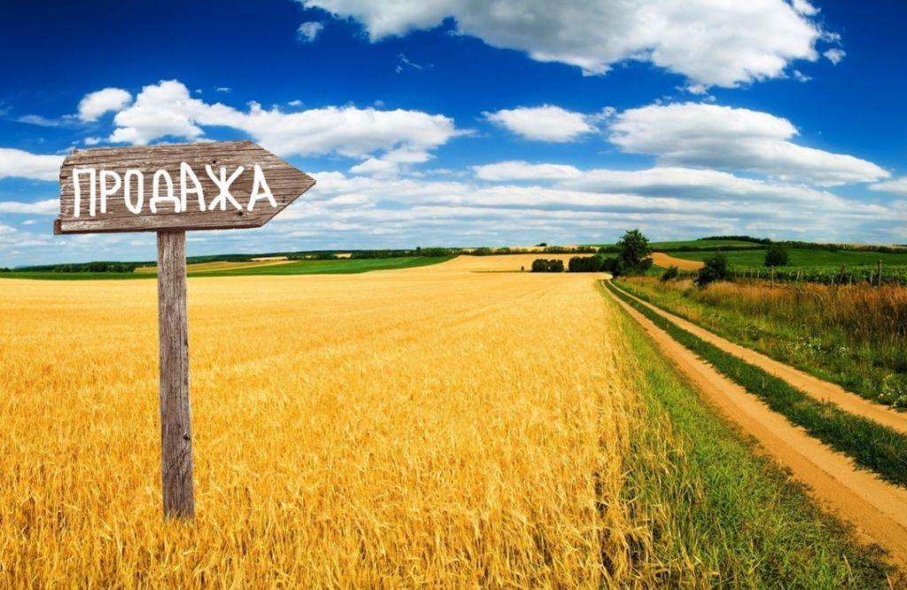 Ринок землі на Черкащині: в уряді розповіли, як купити земельну ділянку