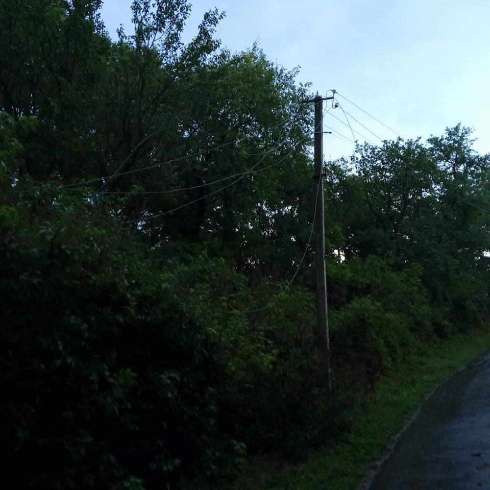 Ламало дерева та рвало лінії електропередач: черкащани скаржаться на вчорашню негоду (ФОТОФАКТ)