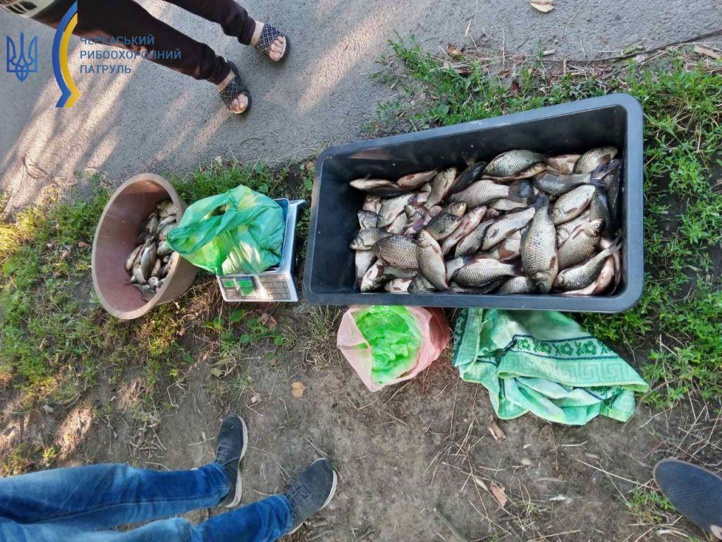 В Христинівці торгують нелегальною рибою