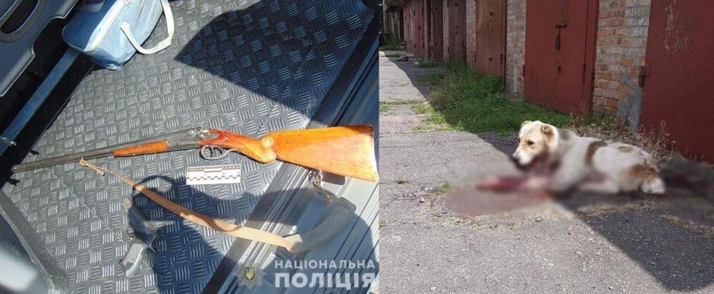 В Умані пенсіонер застрелив пса біля дитсадка