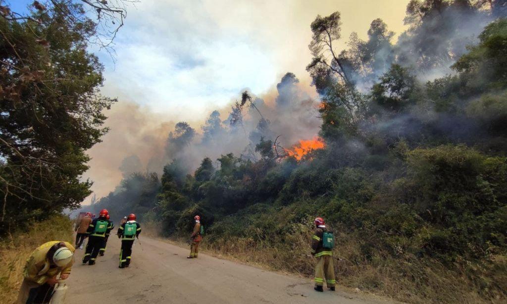 Рятувальники Черкащини продовжують гасити пожежі в Греції